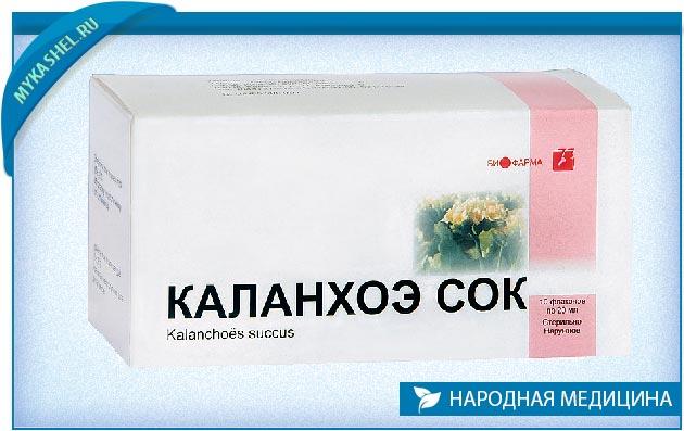 Настойка каланхоэ при простатите лечение простатита иван чаем