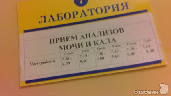 Мочу часы приему сдать переводчика за час стоимость услуги