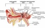 Что такое отит ушей и как он выглядит?