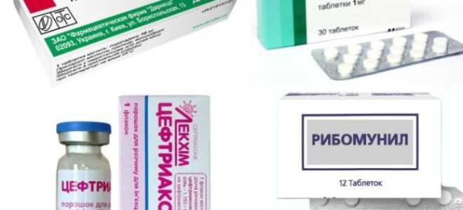 Лекарство от полипов в носу